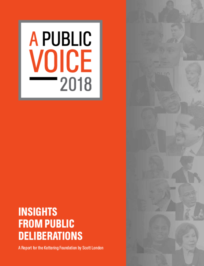 Public Thought And Foreign Policy Essays On Public Deliberations  A Public Voice  Insights From Public Deliberations